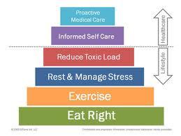 doTERRA Wellness pyramid (1)